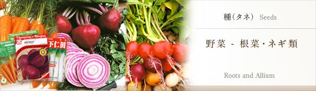 種(タネ):野菜 根菜・ネギ類