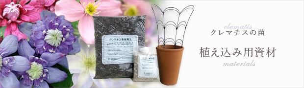 クレマチスの苗:植え込み用資材