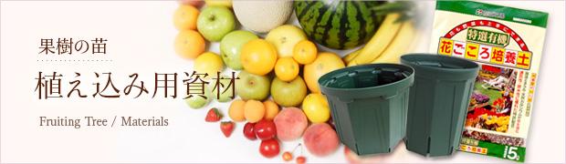 果樹の苗:植え込み用資材