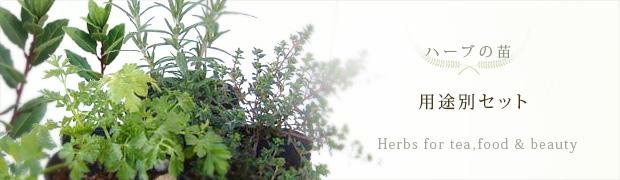 ハーブの苗:ハーブの用途別セット