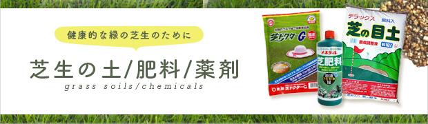 芝生:芝生の土 肥料 薬剤