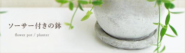 鉢 プランター:ソーサー付きの鉢