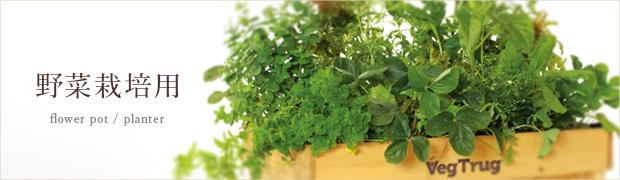 鉢 プランター:野菜栽培用