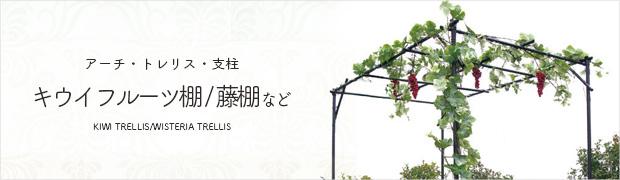 アーチ トレリス 支柱:キウイフルーツ棚・藤棚など