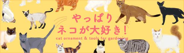 季節の特集:やっぱり猫が大好き!