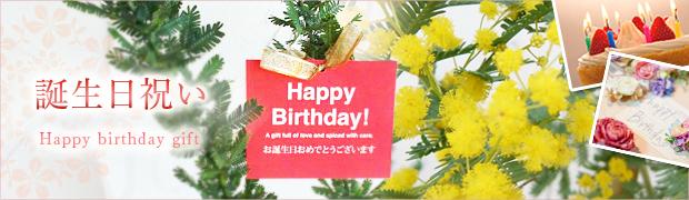 ギフト:誕生日祝い