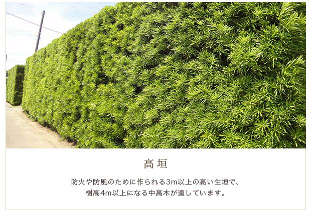 ・高垣:防火や防風のために作られる3m以上の高い生垣で、樹高4m以上になる中高木が適しています。
