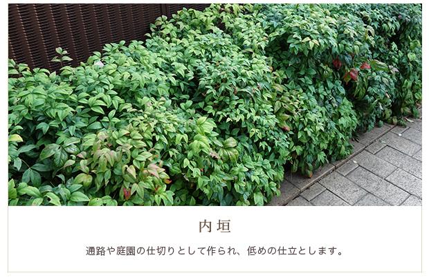 ・内垣:通路や庭園の仕切りとして作られ、低めの仕立とします。