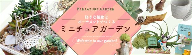 ミニチュアガーデン:植物を選ぼう!