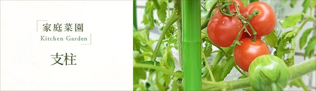 家庭菜園 支柱