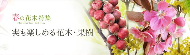 春の花木特集:実も楽しめる花木(果樹)