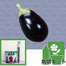 ナスのかんたん栽培セット:米ナス くろわし3号ポット
