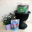 カラーズ:スカイティアラBミックスのスタンド鉢栽培セット
