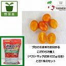 生食用イタリアントマト:イタリアンプラムオレンジ3.5号ポット苗と培養土20リットルと追肥不要の肥料100グラムのセット