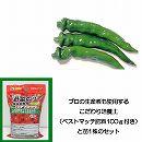 トウガラシ:万願寺唐辛子3〜3.5号ポット苗と培養土20リットルと追肥不要の肥料100グラムのセット