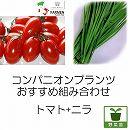コンパニオンプランツ栽培セット:生食用イタリアントマト無農薬:プラムレッドと大葉ニラ