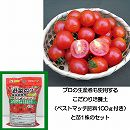 ミニトマト:天使のトマト3号ポット苗と培養土20リットルと追肥不要の肥料100グラムのセット