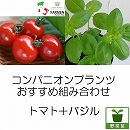 コンパニオンプランツ栽培セット:生食用イタリアントマト・イタリアンレッドとバジル