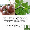 コンパニオンプランツ栽培セット:生食用イタリアントマト無農薬シリーズ・イタリアングレープとバジル