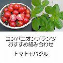 コンパニオンプランツ栽培セット:ミニトマト:天使のトマトとバジル