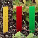 ゴールドカラーラベル1.2cm×9cm 3色(黄・赤・緑)300枚入り