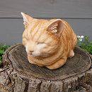 香箱猫ミニ(茶トラ)12146