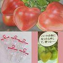 ハートのトマトミニ5個入り5個セット(合計25個)(ミニトマト用型どりケース)
