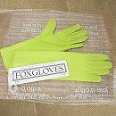 フォックスグローブ:オーガニックグローブ・スプリンググリーンS