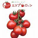 イタリアントマト:エスプロッソ3号ポット 2株セット