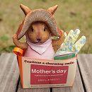[2017年母の日ギフト][予約]きのこウサギ(ピンク)とクローバープチ栽培セット(グローブ付き)