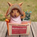 [2017年母の日ギフト][予約]きのこウサギ(ピンク)&ワイルドストロベリープチ栽培セット(グローブ付き)