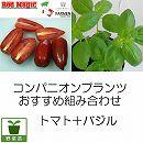 コンパニオンプランツ栽培セット:トマトサンマルツァーノレッドマジック2株とバジル3株