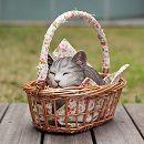 [2017年母の日ギフト][予約]香箱猫ミニ(グレー)とクローバープチ栽培セット(グローブ付き)