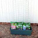 緑のカーテン栽培用プランター・ネット・用土・肥料のセット*