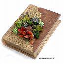 多肉植物用ミニチュア:ピースブック