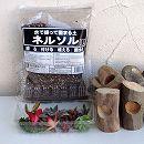 多肉植物の流木ポット植え付け栽培セット(流木ポット5個分)