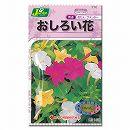 [カネコ 花タネ]おしろい花の種