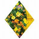 [品種ミックス グランドカバーに!春・秋まき 花タネ]ペルシアンフラワーガーデン ミックス