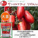 [17年5月中旬予約]イタリアントマト:サンマルツァーノリゼルバ大苗4号ポットと培養土20リットルと追肥不要の肥料100グラムのセット