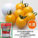 トマト(ミニ):スイートミニイエロー3.5号ロングサマーポット苗と培養土20Lと肥料100gのセット