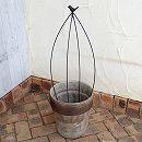 バードケージ型トピアリー オーバルSと陶器鉢のセット