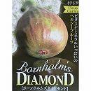イチジク:ボーンホルムズダイヤモンド5号ポット