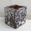 塩焼き鉢:スクエアポットSサイズ(SVTT-1603-S)