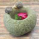 アニマルオーナメント:鉢とハリネズミ(底穴なし)ED10528A