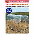 組立かんたん雨除けセットワイド1.9×3.6m(トマト栽培用)