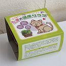 たまの健康サラダ栽培キット