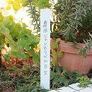 農用ジャンボラベルB型 幅3cm×30cm(白) 5枚セット