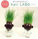hair LABO(ヘアーラボ)底面給水タイプ 2個セット/丸顔と長顔