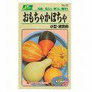 [野菜タネ]おもちゃかぼちゃ(小型・観賞用)*