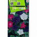 [花タネ]アサガオ(イポメア):桔梗(ききょう)咲き混合朝顔